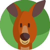 Kangurki